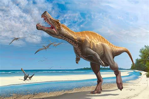 The 10 Most Important Facts About Dinosaurs