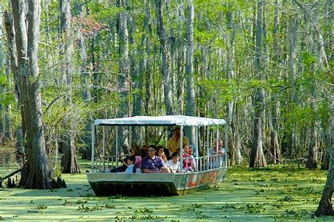 THE 15 BEST Things to Do in Louisiana   2019  with Photos ...