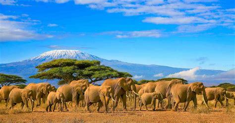 The 6 Most Fascinating Kenyan Landscapes – African Safari ...
