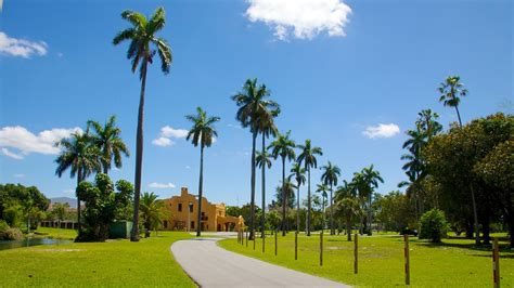 The Best Miami Springs Vacation Packages 2017: Save Up to ...