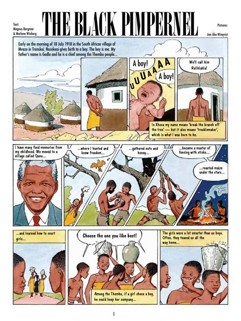 The Black Pimpernel – a graphic story about Nelson Mandela ...