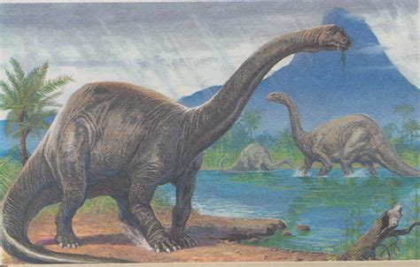 The Brontosaurus is back  if we want it  | Toronto Star