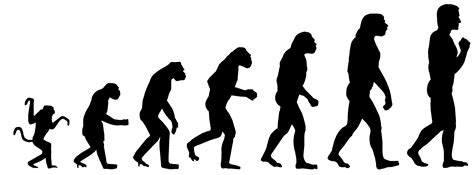 The Catholic Church and Science Part 3: Evolution | St ...