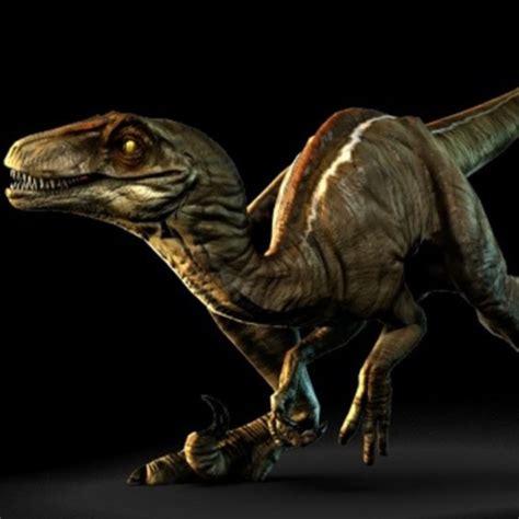 The Derpy Raptor   YouTube