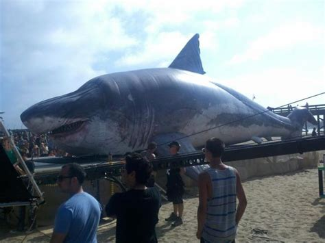 The Discovery Channel s Sharkzilla, a 58 foot model of the ...