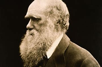 The Ever Evolving Theories of Darwin   TIME