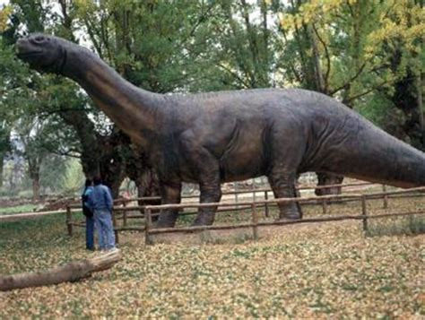 The first dinosaur discovered in Spain is younger than ...