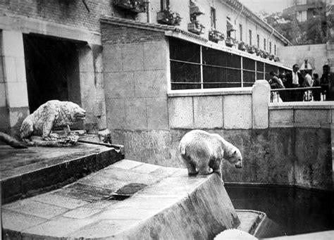 The History of the Madrid Zoo Aquarium   Citylife Madrid