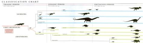 The Linnaean System of Classification | HowStuffWorks