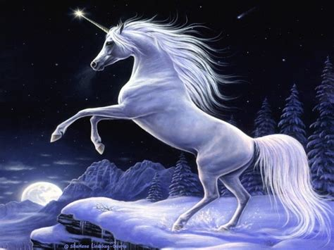 The meaning and symbolism of the word   Unicorn