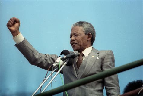 The Meaning of Mandela   The Nation