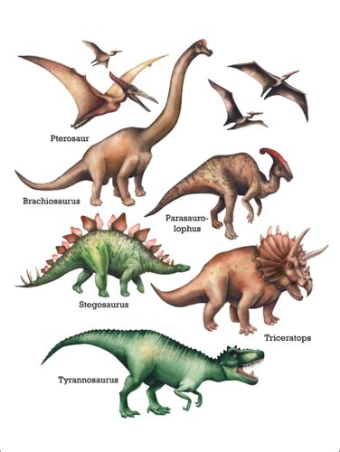 The names of the dinosaurs Posters and Prints ...