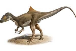 The new species of dinosaur, Concavenator corcovatus   ABC ...