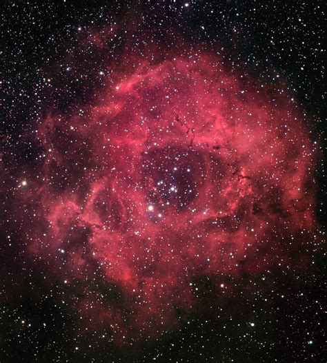 The Rosette Nebula    Nebulosas, Nebulosa, Universo