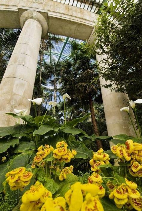 The Royal Greenhouses of Laeken   The Belgian Tourist ...