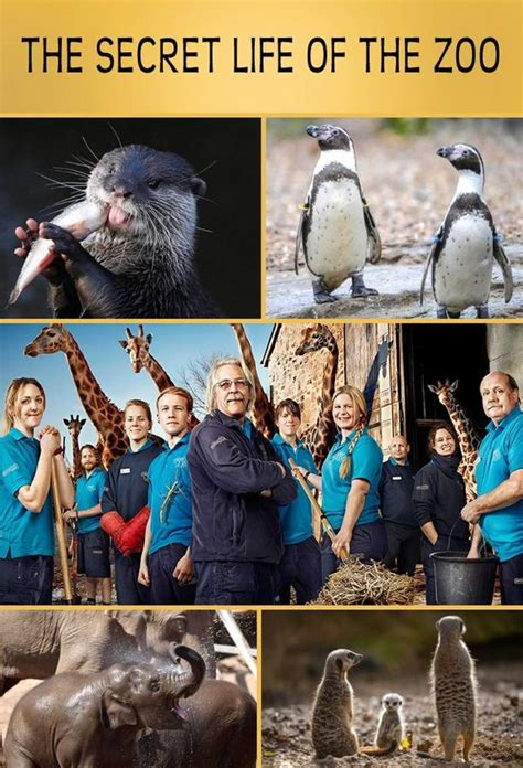 The Secret Life of the Zoo   Trakt.tv