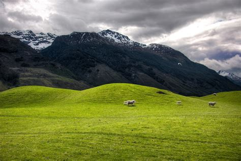 The Soft Hills on the way to Paradise, New Zealand | Flickr