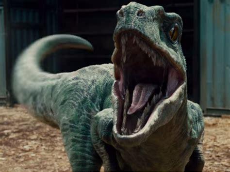 The Velociraptors in the  Jurassic Park  movies are ...
