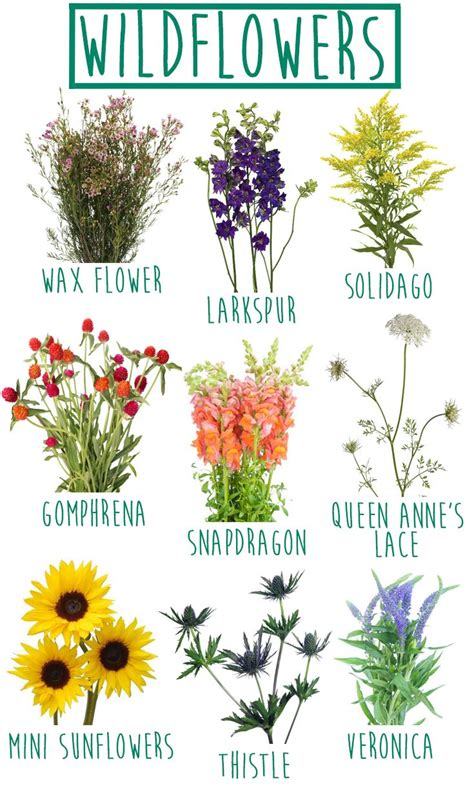 The Wildflower look is totally DIY friendly! Carefree and ...