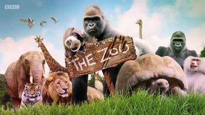 The Zoo  2017 TV series    Wikipedia