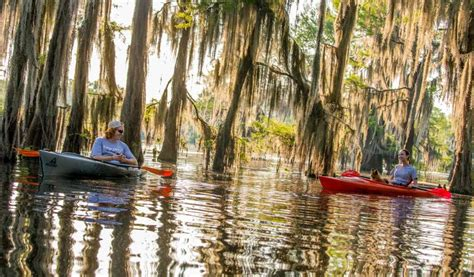 Things To Do In Shreveport With Kids – Kids Matttroy