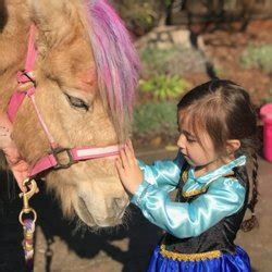Tickle Me Pony Parties and Traveling Petting Zoo   18 ...