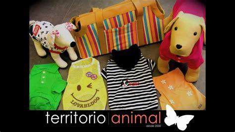 Tienda de mascotas en Madrid.   YouTube