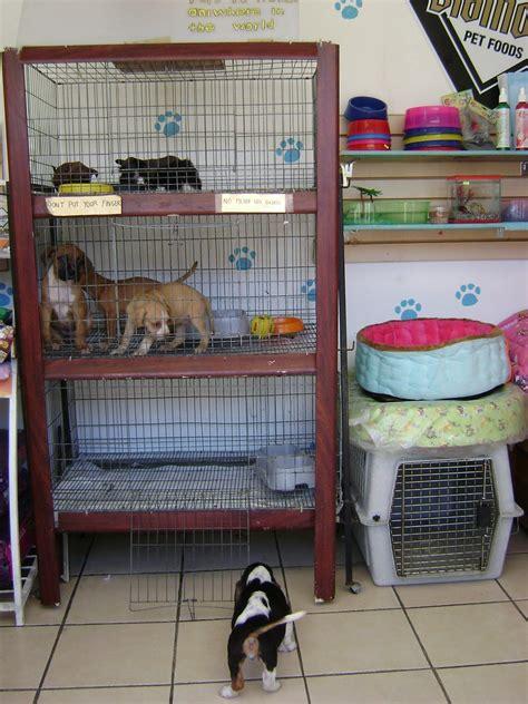 Tienda de mascotas/Pet shop, Puerto Vallarta, México   www ...