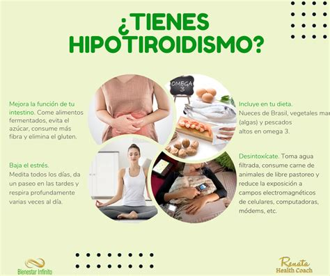 ¿Tienes hipotiroidismo? | Alimentos para hipotiroidismo ...