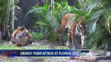 Tiger Mauls Zookeeper to Death at Florida Zoo   NBC News