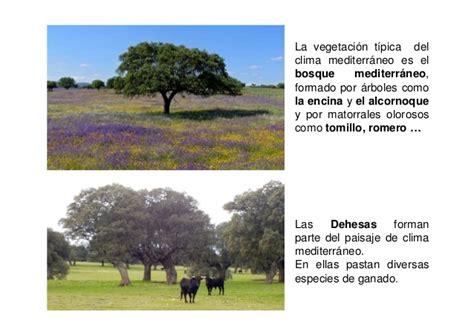 Tipos climas presentación felipe [modo de compatibilidad]