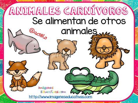 Tipos de animales claseficación  7  – Imagenes Educativas