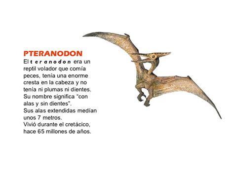 Tipos De Dinosaurios Con Nombres   SEONegativo.com