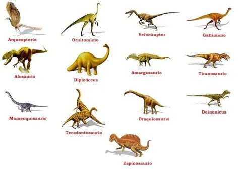 Tipos de dinosaurios – clasificación científica | Tipos de ...