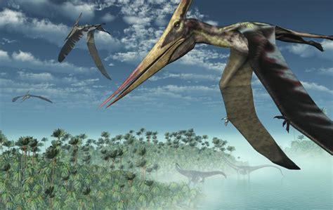 Tipos de dinosaurios voladores   VIX