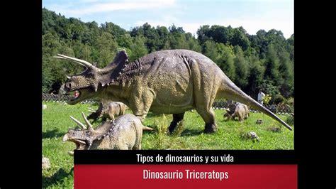 Tipos de dinosaurios y su vida   YouTube