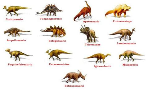 Tipos de dinosaurios y sus nombres   Imagui