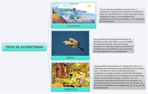 TIPOS DE ECOSISTEMAS    XMind Online Library