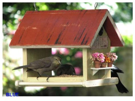 Tips: Cómo elaborar una casita para pájaros?