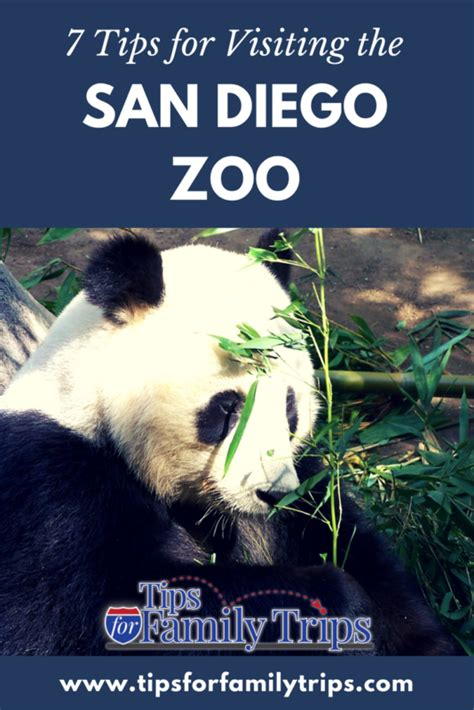 Tips for visiting the San Diego Zoo | San diego zoo, San ...