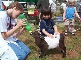 Toddler children s parties entertainment ideas! | Fun ...