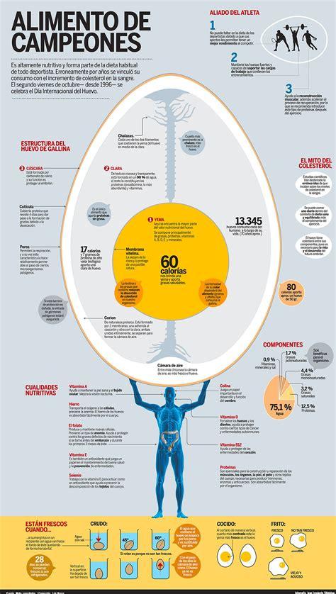 Todo lo que necesitas saber sobre el huevo | Infografías y ...