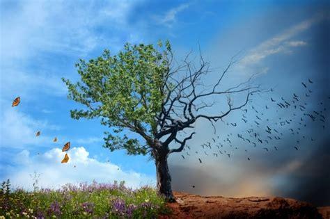 Todo Sobre El Cambio Climatico Causas Y Consecuencias   El ...