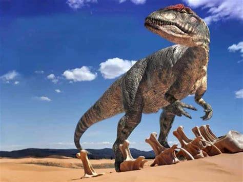 Todo sobre los dinosaurios carnívoros [vida al completo ...
