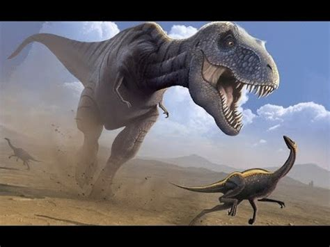 Todo sobre los dinosaurios Mundo Animal   YouTube