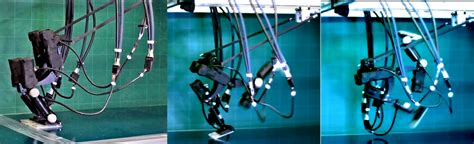 Tokyo Scientists Invent Bipedal Robot That Runs and ...