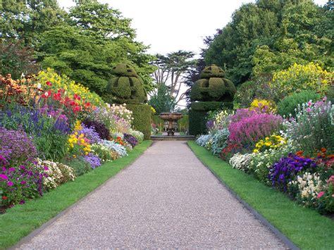 Top 10 arbustos con flores en tu parque   Parques Alegres ...