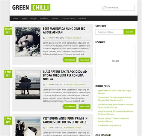 Top 10 Best Free Responsive Premium WordPress Themes for 2015