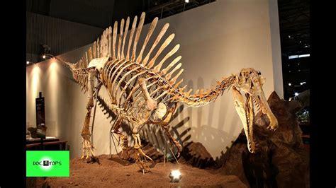 Top 10 Dinosaurios Carnívoros Más Grandes Y Aterradores ...