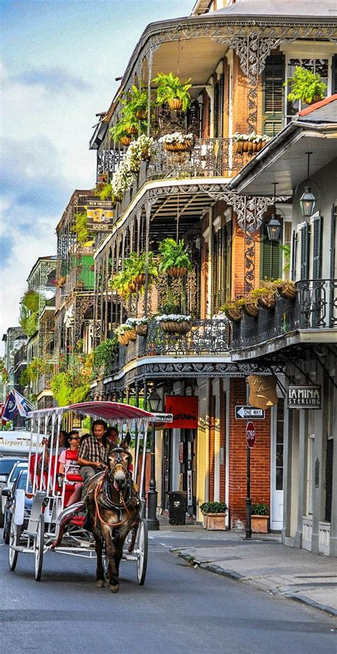 Top 10 Things To Do In New Orleans   New orleans travel ...